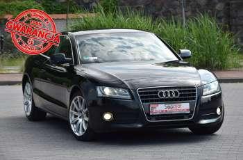"Audi A5 Coupe 2.0TFSi 211KM Manual 2010r. Xenon NAVi LED 18"""