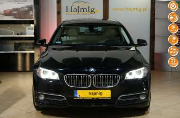 BMW 520 Luxury Line + Pakiety, fv VAT 23, salon PL, Gwarancja x5
